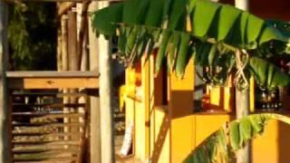 San Pedro Campig América () Bar playa  2009 PROBANDO CAMARA!!!