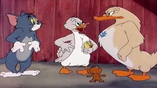 Tom And Jerry English Episodes   Little Quacker   Cartoons For Kids