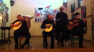Fado de Coimbra - Serenata de Coimbra - LIVE at cafe santa cruz