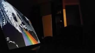 Panda Eyes - Artificial [demo cover]