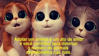 "Atirei o pau no gato ~ Ritmo ""Blues"""