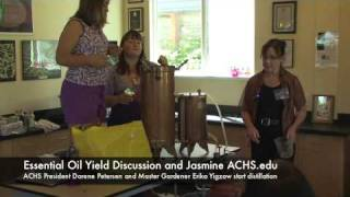 ACHS.edu Lavender Harvest and Distillation Part 5: Discussing Yield and Jasmine