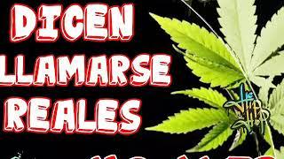 Mc Aler - Dicen Llamarse Reales (punto&coma.prod.)