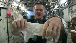 Astronot Ini Peras Handuk di Luar Angkasa, Apa yang Terjadi?