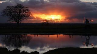 Wild Fire Sunsets