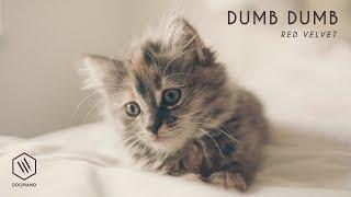 레드벨벳 (Red Velvet) - Dumb Dumb Piano Cover