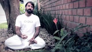 O-DGI: O Despertar do Guerreiro Interno (Introdução)