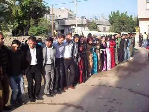 Mersinde Düğün (Mamxura)