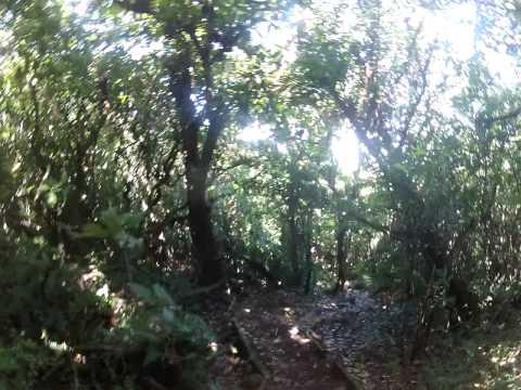 Greenpathways Tours – Mombacho volcano