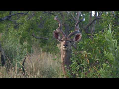 Vacation Spotlight – South Africa
