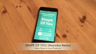 Shape Of You Ringtone (Ed Sheeran Tribute Marimba Remix Ringtone) • For iPhone & Android