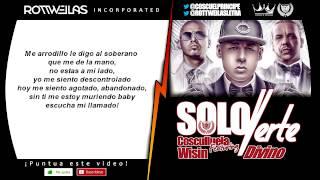 Cosculluela Ft Wisin, Divino - Solo Verte Remix (Con Letra)