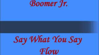 Boomer Jr. - Say What You Say Flow