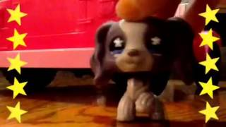 LPS:Complicated-Music Video