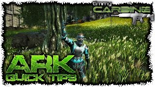 Ark:SE Quick Tips || Crafting on the go || TimmyCarbine