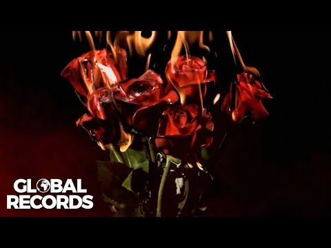Vibe Drops feat. Chriss Grey & Anna - Rose on Fire