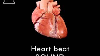 Heart Beat Sound