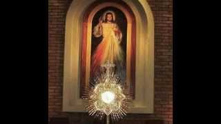 Ante tu presencia - Canto Eucaristico