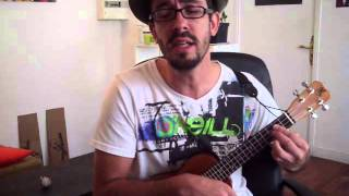 Ukulele Cover - Rise - VedderE. (Into The Wild)