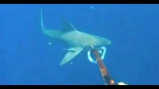 Stranded Scuba Diver Surrounded by Sharks [CAUGHT ON TAPE]
