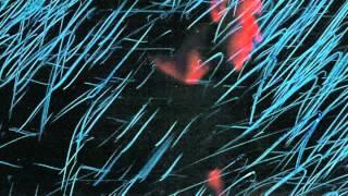 Sky Rizzo - Mind Plays(I'm God) Prod. Clams Casino (Music Video) (Lyrics)