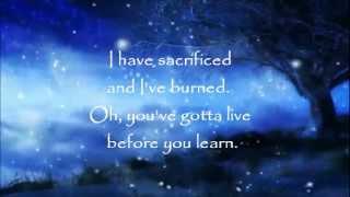 Ron Pope - In My Bones (lyrics)
