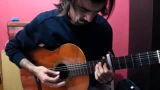 klasik gitar - pena
