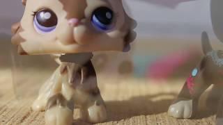 'Horrible Kids'~MV (re-uploaded)