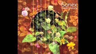 Sonex - Pajaro Cu (1/13)