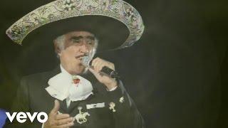 Vicente Fernández, Mariachi México de Pepe Villa - El Tahur (Audio)