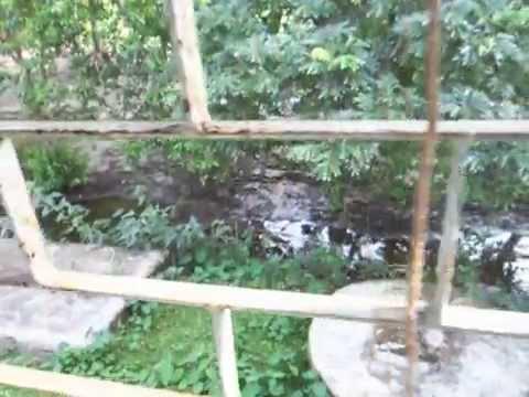 nijhum dip, Noakhali , Bangladesh