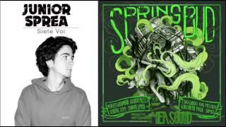 Junior Sprea -  Siete voi - Spring Bud riddim
