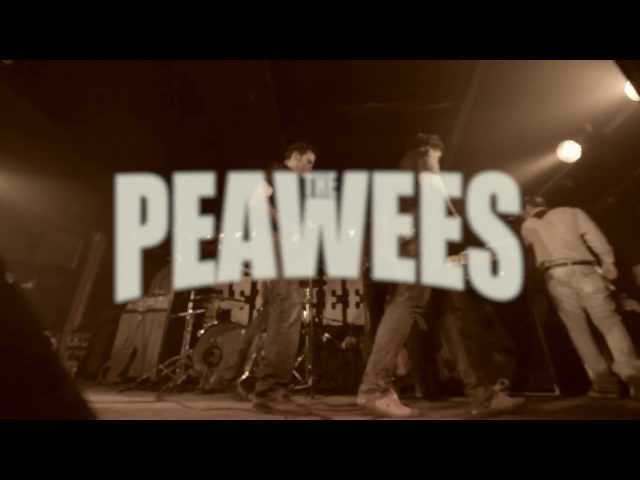 Videoclip de The Peawees - Memories Are Gone