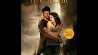 new. New moon book cover