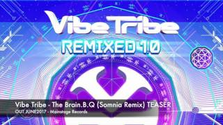 Vibe Tribe - The Brain.B.Q (Somnia Remix) TEASER [OUT 03.06.17]