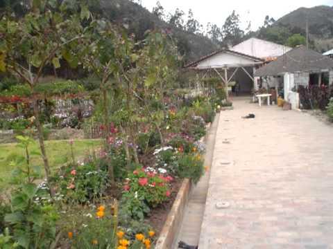 Hosteria Del Rio