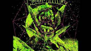 Weedsnake - The Mantis and the Firefly