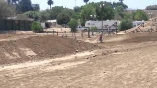 6yo girl rippin dirt bikes
