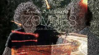 THE ZOMBIES featuring COLIN BLUNSTONE & ROD ARGENT - Shine On Sunshine