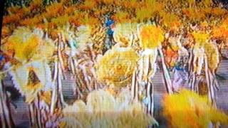 Desfile da unidos de vila Maria 2017