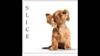 DJ Slice - Barbecue Lays (INSTRUMENTAL)