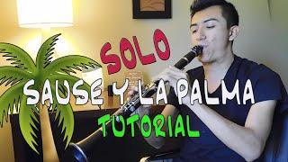 SOLO DEL SAUSE Y LA PALMA  TUTORIAL CLARINETE / AU MUSIC