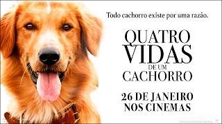 """Quatro Vidas de Um Cachorro - Spot Every Life """"30 (26 de Janeiro)"""
