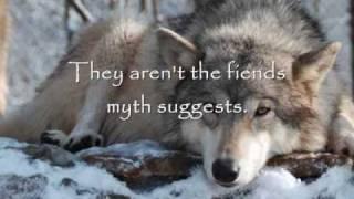 Wolves -  A Sad Reality
