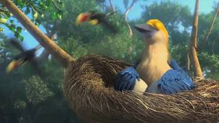 Rio - The Jungle Jig (Angry Birds)