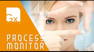 Gx BPM - Process Monitor