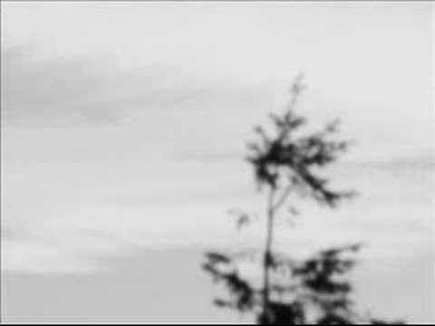 arovane-good-bye-forever-veronica-gravino