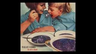 Wallace Vanborn - The Orb We Absorb (New Album - Out on October 30th 2014)