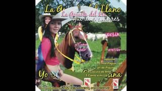 04 Locura de amor   La gaviota del llano   Gabriela Linares