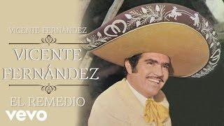 Vicente Fernández - El Remedio (Cover Audio)